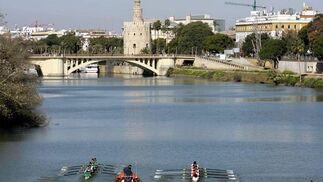 El río Guadalquivir acoge un año más la regata Sevilla-Betis.  Foto: Manuel Gómez