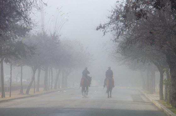 Dos agentes de la Policía Nacional a caballo, entre la niebla del Parque de María Luisa.  Foto: Juan Carlos Muñoz