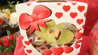 Flor de regalo en Ramitos.  Foto: Victoria Hidalgo - Belén Vargas