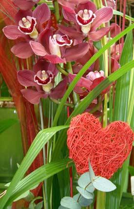 Variedad de flores en Ramitos.   Foto: Victoria Hidalgo - Belén Vargas