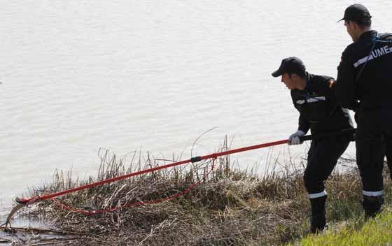 Momento del rastreo en el Guadalquivir.  Foto: Victoria Hidalgo