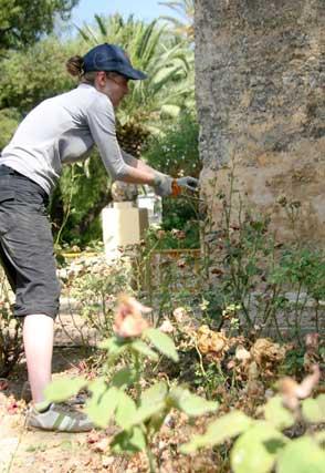 Las protagonistas de estos jardines de palacio son sin duda las grandes Palmeras  Foto: Belén Vargas