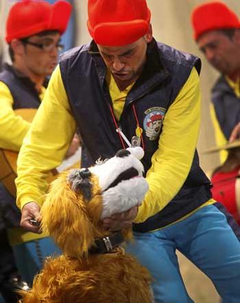 Chirigota Los encantandores de perros  Foto: Jesus Marin