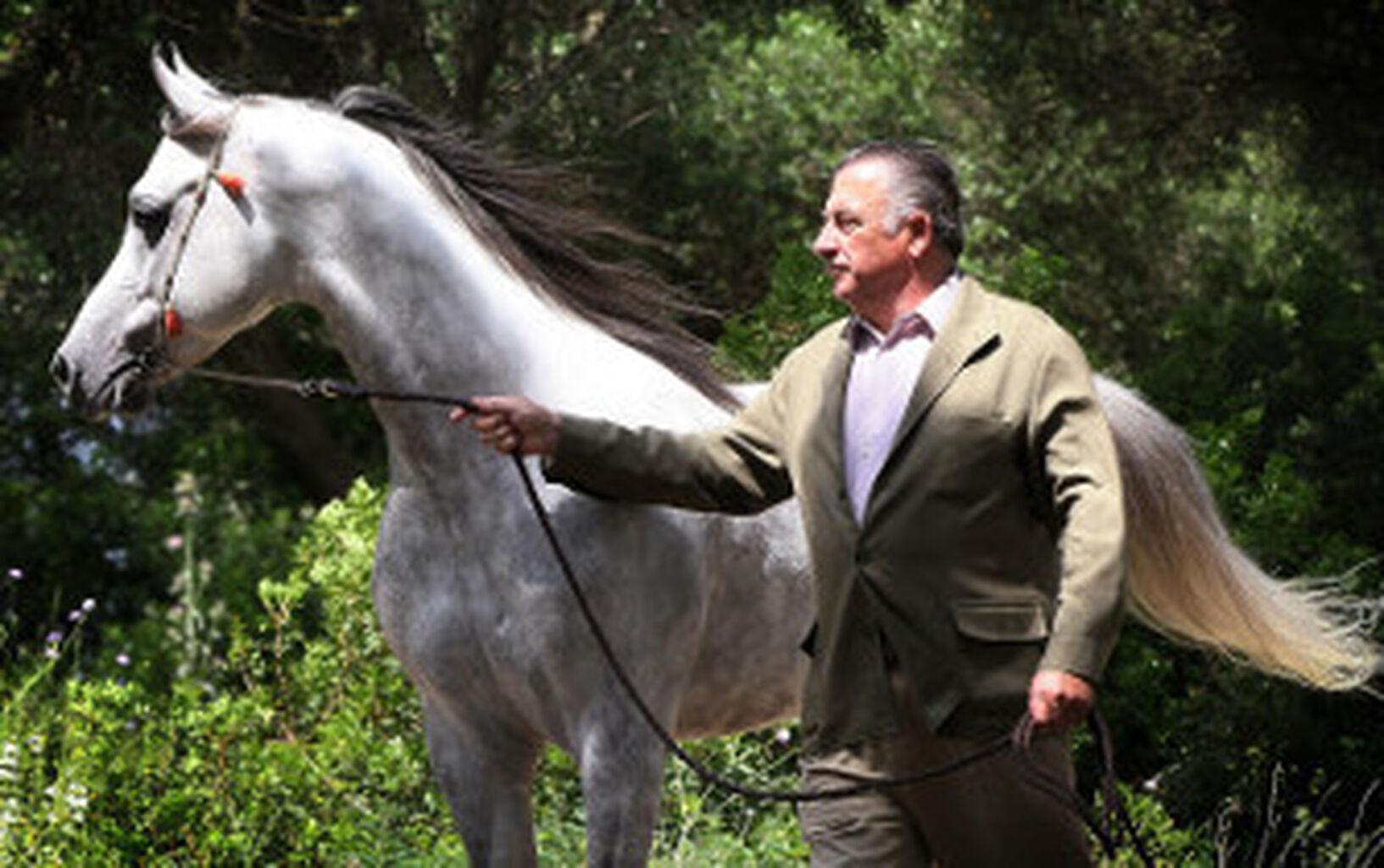 El ganadero y escultor Nicolás Domecq, Caballo de Oro 2014