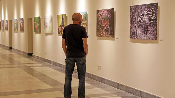 Un visitante observa una de las obras que se exponen en los Claustros.