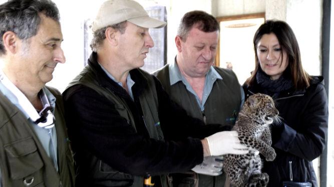 Empleados del zoo de Jerez examinan a la cría.