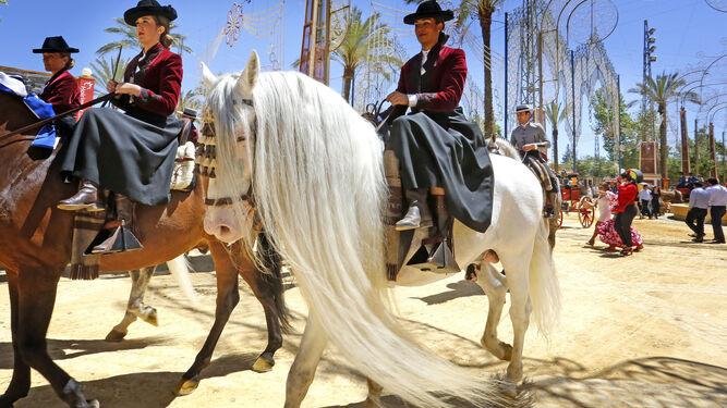 El paseo de caballos volvió a mostrar una imagen propia de Jerez, la reunión del animal y la tradición.