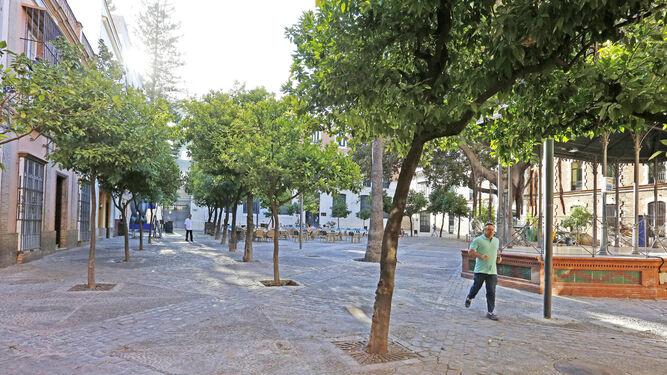Zona de naranjos en uno de los laterales de la plaza del Banco donde, presumiblemente, pasarían las cofradías.