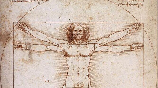 'El hombre de Vitruvio' de Leonardo da Vinci.