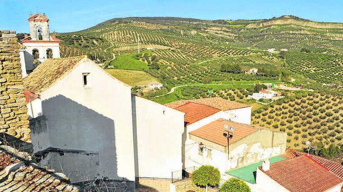Olivares y campos de espárragos, vistos desde Torre Alháquime.