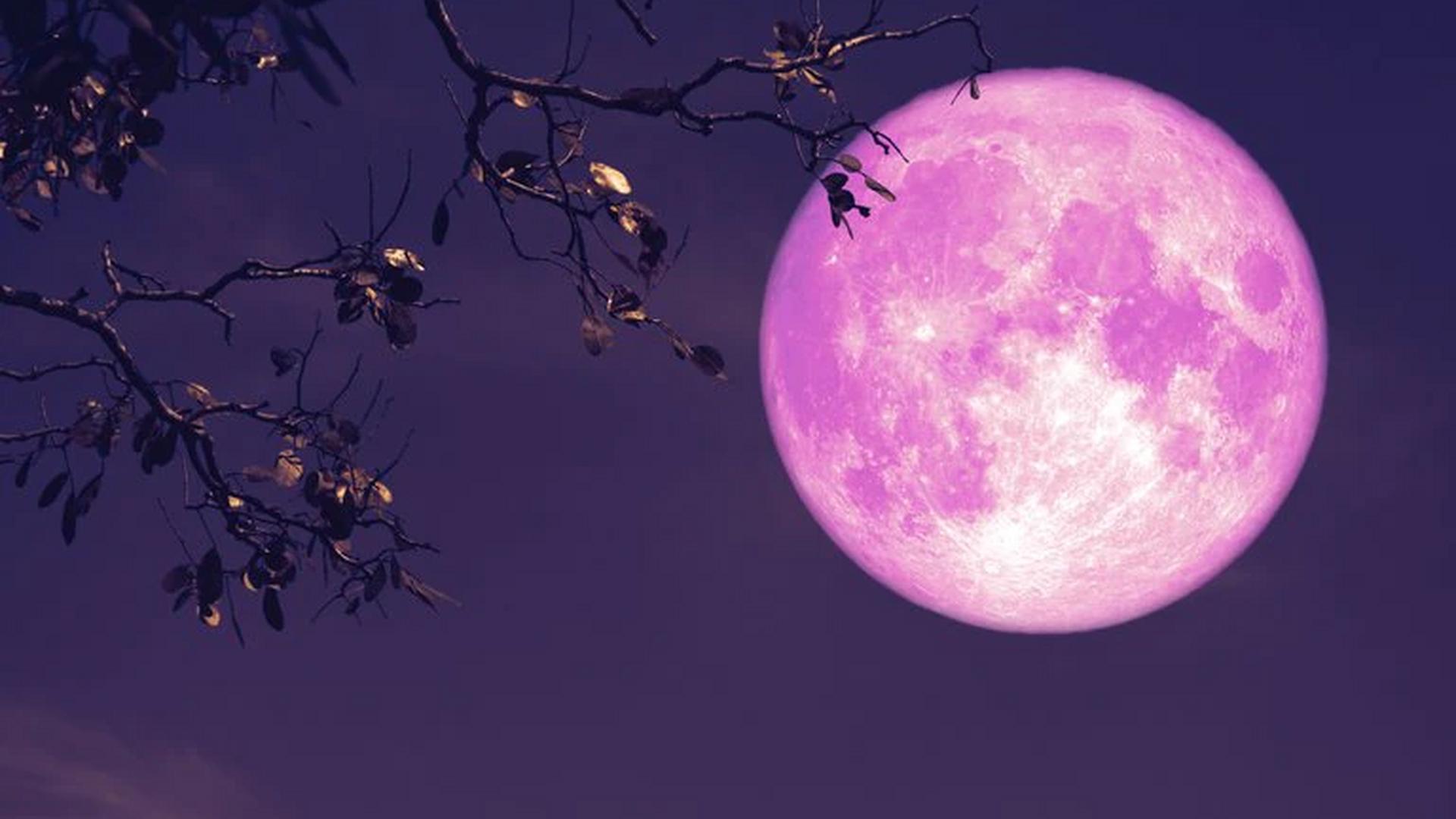 Luna de fresa: Los rituales para...